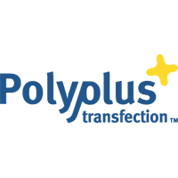 Polyplus Transfection